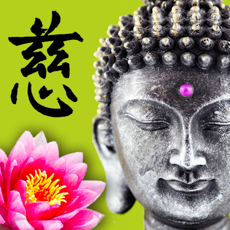 Wisdom Cards - Spiritual Guide 2.1 ios官方版